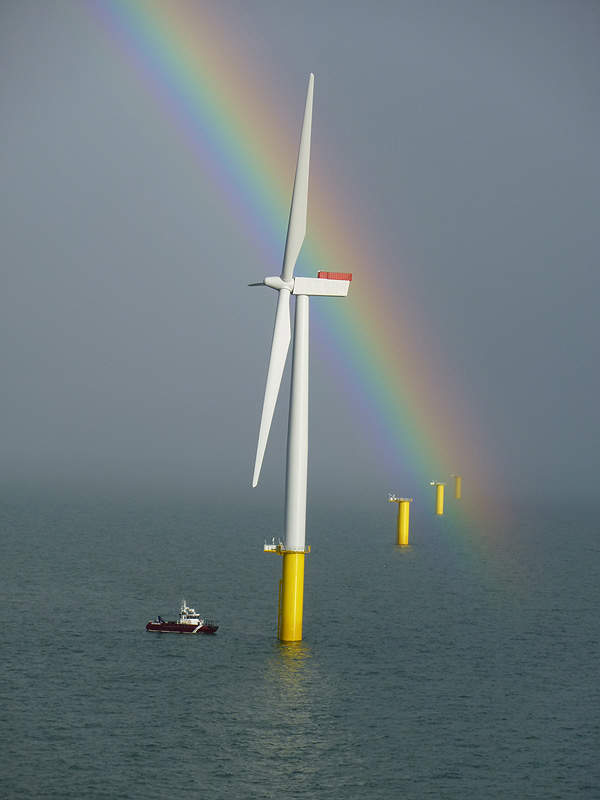 The Walney offshore wind farm under construction. Image courtesy of DONG Energy.