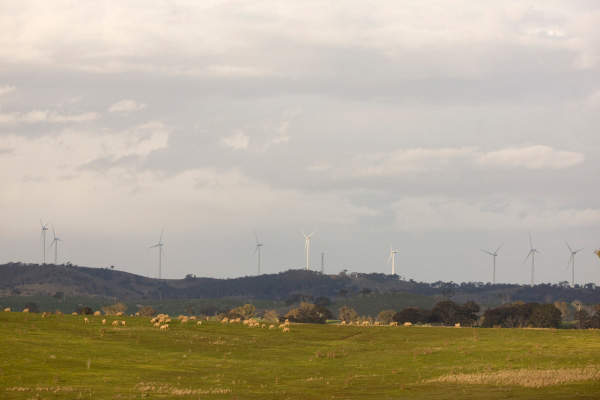The Cullerin Range, located 30km from Goulburn in southern NSW, Australia, has an installed capacity of 30MW. Image courtesy of Origin Energy.